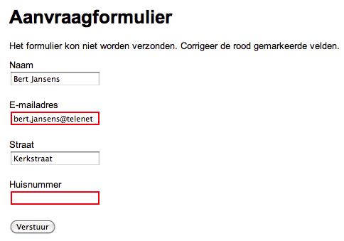 screenshot formulier met rood gemarkeerde velden
